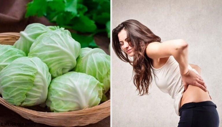 試著使用這種黏土、醋和高麗菜葉療法來減少疝氣