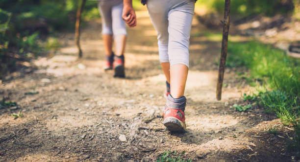 協助心臟運作的四種運動