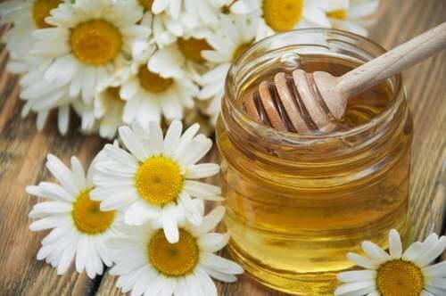 洋甘菊蜂蜜