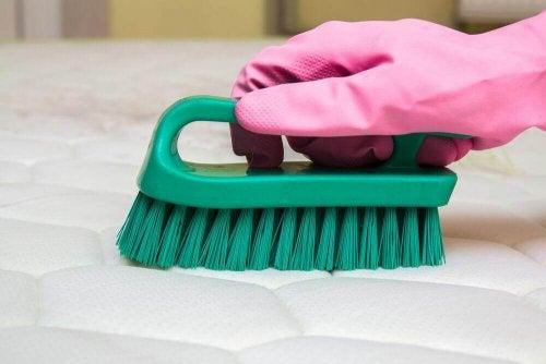 用這些秘訣去除床墊上的異味