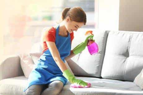 清理家具灰塵的五種成份