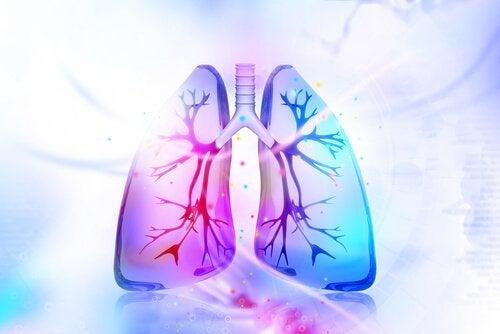 用這三種自然療法為肺排毒