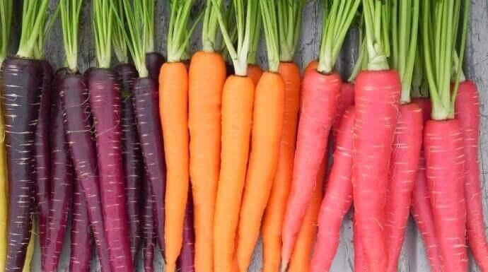 紅蘿蔔的超美妙健康效益