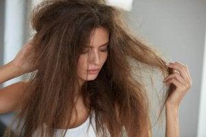 頭髮毛躁1
