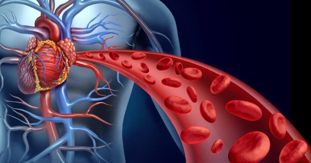 四種刺激身體血液循環的天然方法