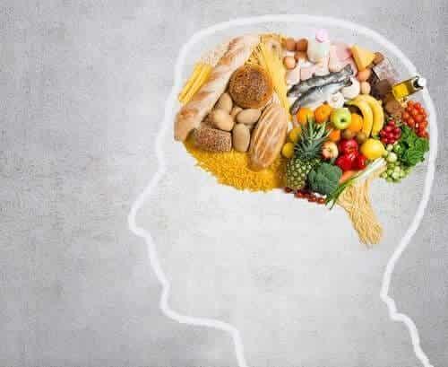 大腦所需的基本脂肪