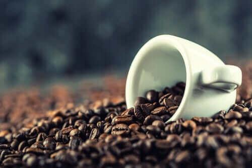 咖啡大腦表現