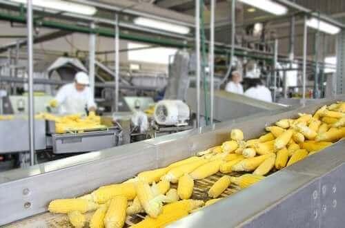 食物處理方法對食物營養價值的影響