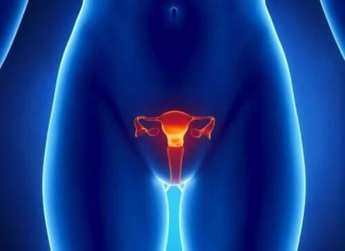早發性卵巢功能不全