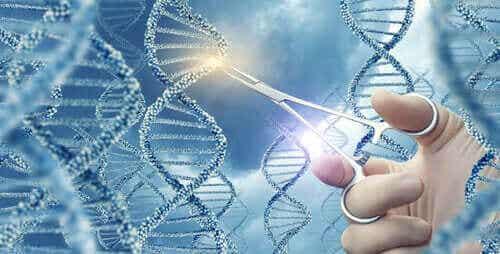 基因突變是什麼?