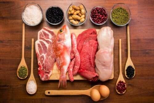 關於人體內蛋白質功能的一切資訊