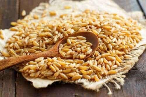 卡姆小麥的特性和好處有哪些?