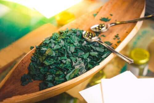 食用螺旋藻的五個注意事項和禁忌症